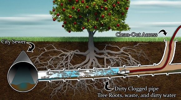 Image Result For Main Sewer Line Clogged